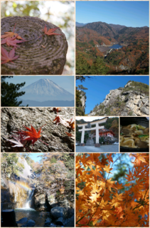 Collage 2013-11-29 23_02_05.png