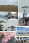 Collage 2013-02-22 23_19_07.png